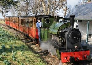 Drive a Steam Train