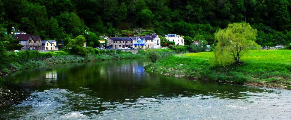 Wildlife & Nature in Wye Valley